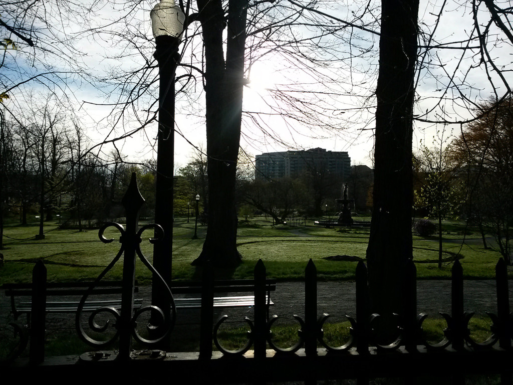 Bright and early at the Public Gardens, walking to the race